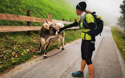 Tekaških 90 km čez Karnijske Alpe